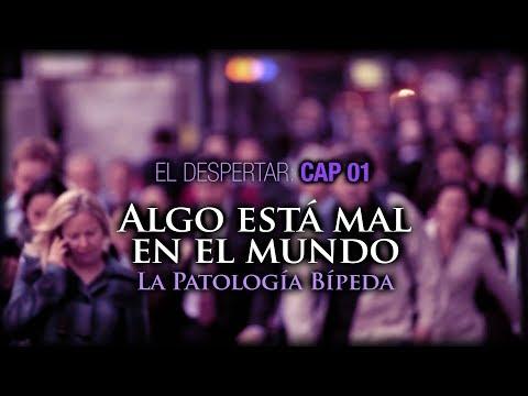 01. Algo está mal en el Mundo. La Patología Bípeda.