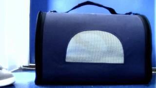 Nathan & Gomes - Season 1 Finale - EP.5 Trailer
