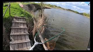 Рыбалка на карпа Первый выезд в 2021 году Клев как с пулемета