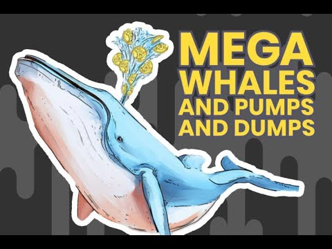 Altcoin Prices SURGE and DROP in 24 hours   Pump and Dump Whales to Blame?