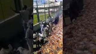 Bernde de Magal touba Argentina 2018