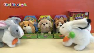 Toys Kingdom Battery Operated Animal Plush
