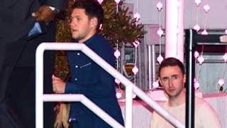 One Direction's Niall Horan And Liam Payne At The Ariana Grande Concert