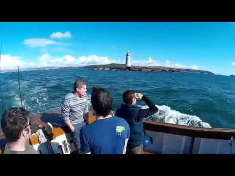 Fishing With Fish N Trips In Plymouth