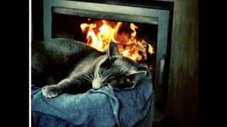 El gato que esta triste y azul. Roberto Carlos.