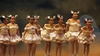 การแสดงเต้นเพลงวิหคเหินลม ป.1/4 สาธิตมศว.ประสานมิตรภาคบ่าย