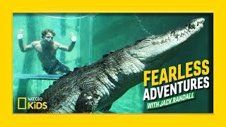 Swimming with a Giant Saltwater Crocodile | Fearless Adventures with Jack Randall