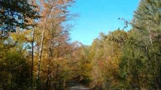 Leaf Peeping (The Flatlander Song -- funnier version)