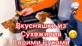 как приготовить из сухожилия вкусняшки для собак своими руками