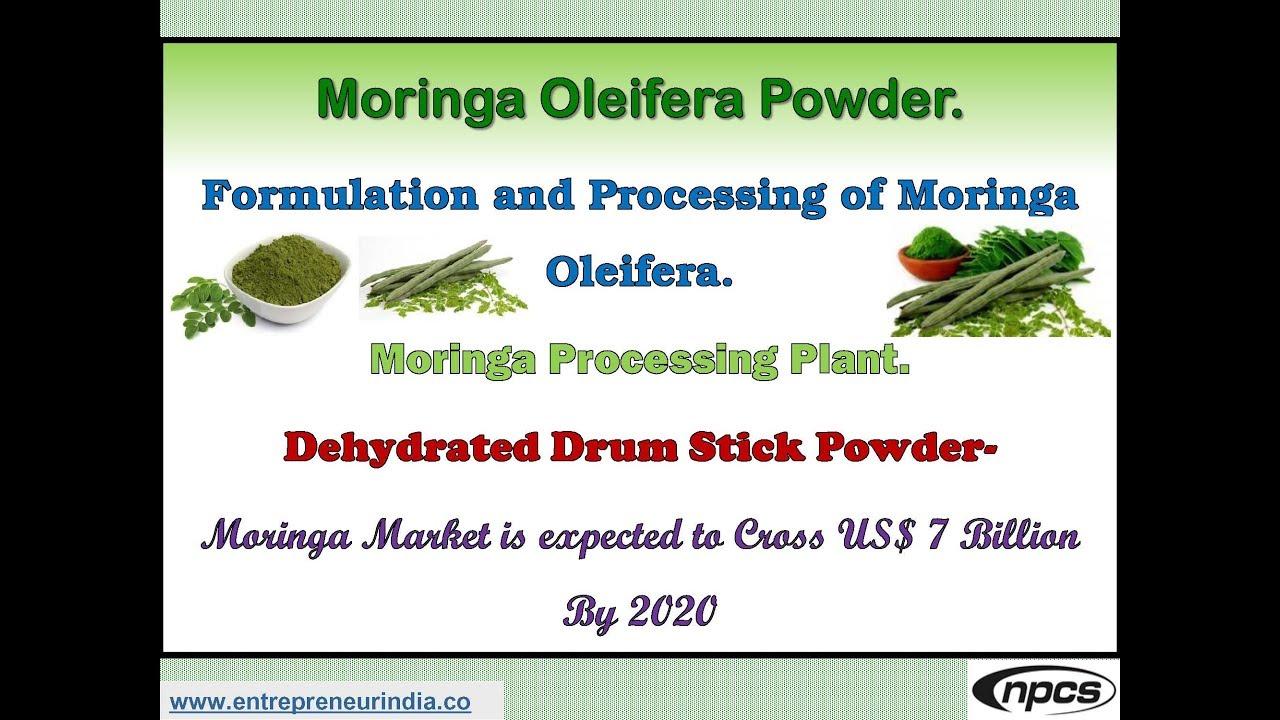 moringa leaf powder project report
