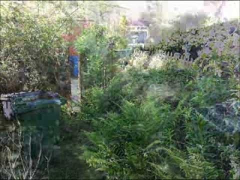 Tidying An Overgrown Garden By Chris M The Handyman Youtube