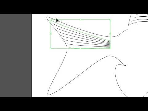 007 Fish 1 Fin Rays