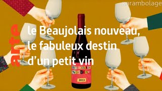 le rite : le Beaujolais nouveau - Karambolage - ARTE