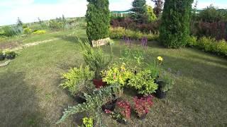 видео Зоны Зимостойкости Растений