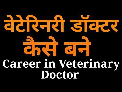 वेटरनरी डॉक्टर कैसे बने,क्या करे | How To Become Veterinary Doctor |  Qualifications, Jobs, Career