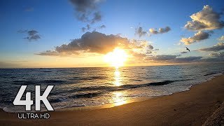 Download 4K SUNRISE ON THE BEACH 60 FPS ULTRA HD MIAMI BEACH SOUTH BEACH RELAXATION AΩ