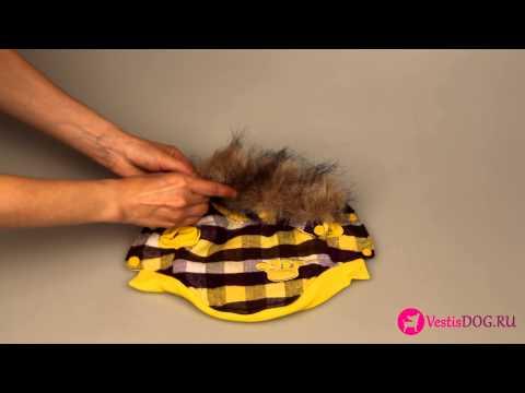 Жилет желто-фиолетовый Корона