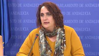 Adelante Andalucía exige claridad a los socios del Gobierno andaluz ante el pin parental