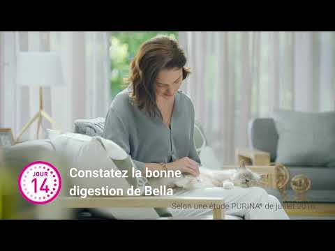 PURINA ONE® - Le Programme 21 Jours PURINA ONE® 15s