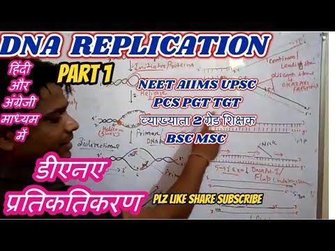DNA REPLICATION Hindi n English part 1