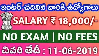 IIMR job notification | Latest jobs 2019 | Govt jobs information | Telugu job alerts | Job news 2019