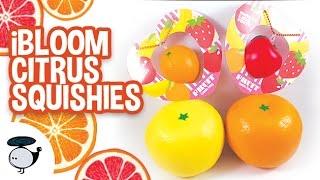 Ibloom Squishy Haul : Hello Kitty Cream Puffs and iBloom Squishies! [Silly Squishies] - pcook.ru
