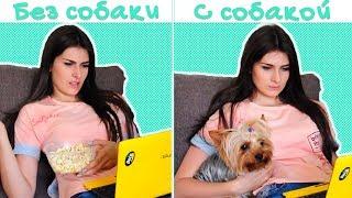 Жизнь с собакой и без / Скетч!