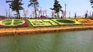 Парк Тюльпанов Южная Корея