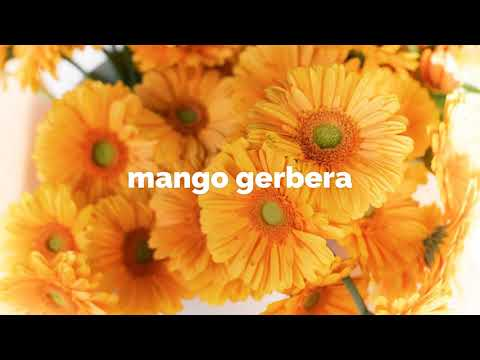 Vendor Spotlight: EZ Flower