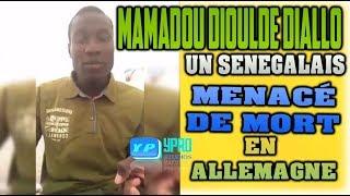 Baixar MAMADOU DIOULDE DIALLO UN SENEGALAIS MENACÉ DE MORT EN ALLEMAGNE