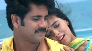 Shivamani Telugu Movie || Yenaatiki Video Songs || Nagarjuna, Asin