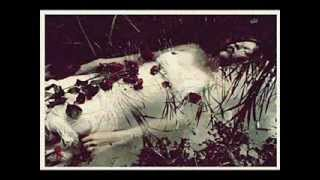Nick Cave & Kylie Minogue - Where The Wild Roses Grow (Ophelia)