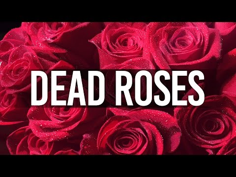 LOVE RAP BEAT - Romantic Love Rap Beat - Dead Roses (Prod. INS Beats)