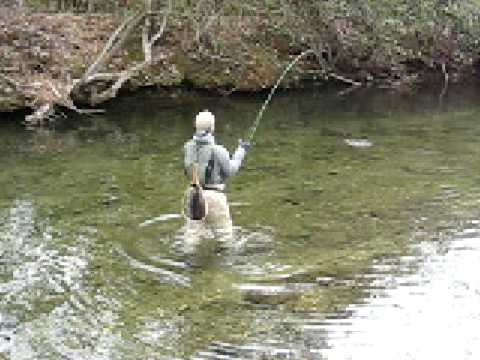 Fly fishing the davidson river nc youtube for Nc wildlife fishing license