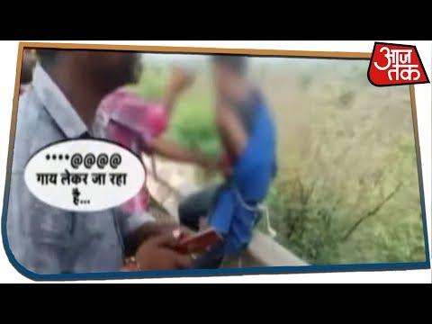 Madhya Pradesh: गोरक्षा के नाम पर फिर गुंडागर्दी, कटनी में गाडी से गाय बरामद तो पिटाई