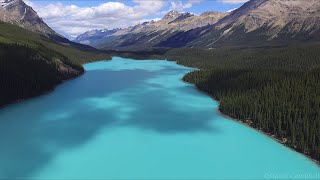Flying over Peyto Lake in HD 2016 - Banff National Park - Drone Video