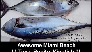 Fishing Adventures #73 - Awesome Miami Beach Trolling for Bonito Kingfish and Blackfin Tuna