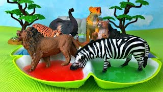 Learn colors with zoo animals Colours With Animals for Children Learn zoo animal names