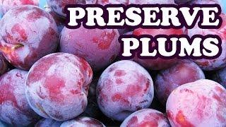 How To Freeze Preserve Plums - Fruit Preserves Ripe Plum Preserving Recipe In Freezer Video Jazevox