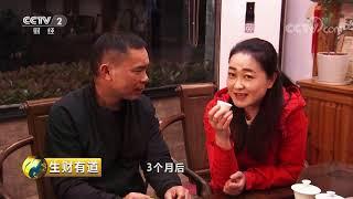 《生财有道》 20190718 茶乡 茶香| CCTV财经