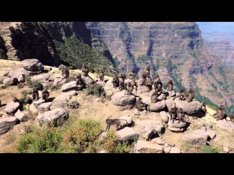 Ethiopia by drone - The Simien Mountains