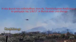 Η φωτιά στην περιοχή Αγ. Παντελεήμονα Αναβύσσου. 1 8 17