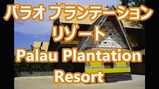 パラオ プランテーション リゾート ホテル ~ Palau Plantation Resort Hotel ~ ダイビングに! scuba diving!