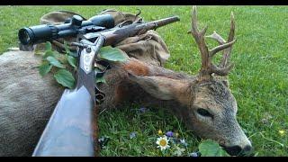 Охота на косулю. Волшебный манок)) Подошёл на 17 шагов.Jagd auf Rehe. Magische Köder))Hunt for deer.