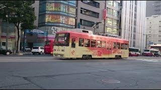 広島電鉄800形809号『うまか豆ラッピング』紙屋町東〜立町