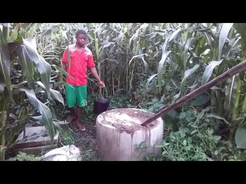 How to produce Bio gas from animal and household waste In Buea SWR Cameroon