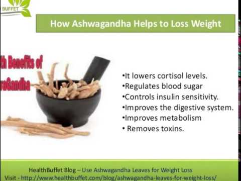 Benefits of Ashwagandha: Weight Loss, Thyroid, Adrenal ...