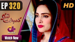 Pakistani Drama | Kambakht Tanno - Episode 320 | Aplus Dramas | Nousheen Ahmed, Ali Josh