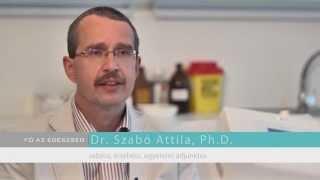 Dr. Szabó Attila, visszérkezelés fájdalomentesen - Fő az egészség(Rádiófrekvenciás kezeléssel az esetek 80-90%-ban már egy alkalommal látványos eredmény érhető el. Nagy előnye, hogy nem kell utána kompressziós ..., 2014-05-16T14:06:58.000Z)