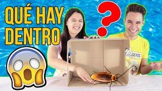 ¿QUÉ HAY EN LA CAJA? 📦 WHAT'S IN THE BOX CHALLENGE - Mayden y Natalia